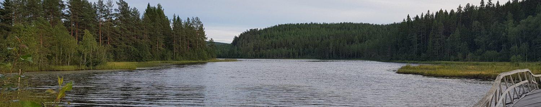 Lidens nedre fiskevårdsområde